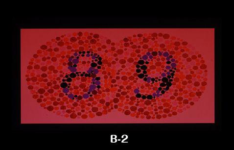 色覚特性(いわゆる色盲・色弱)チェックB2