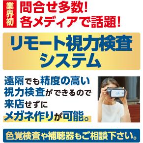 リモート視力検査システム