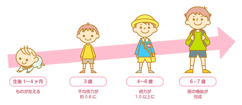 子供の眼の成長