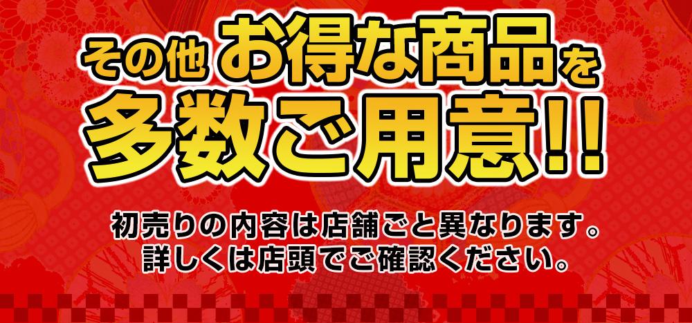 その他お得な商品を多数ご用意!!2019年1月1日スタート!!!!